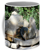 Gray Fox 4 Coffee Mug