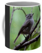 Gray Grey Bird 052814a Coffee Mug