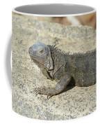 Gray Iguana With Long Talons Sitting On A Rock Coffee Mug