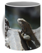 Gray Iguana With Spines Along His Back On A Rock Coffee Mug