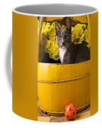 Gray Kitten In Yellow Bucket Coffee Mug