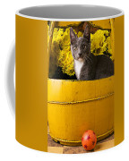 Gray Kitten In Yellow Bucket Coffee Mug
