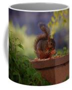 Munching Squirrel Coffee Mug