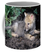 Gray Wolf Pup With Prey Coffee Mug