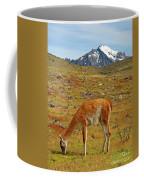 Grazing Guanaco In Patagonia Coffee Mug