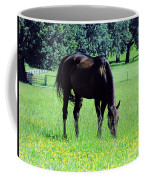 Grazing Horse In The Flowers Coffee Mug