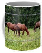 Grazing Horses - Cades Cove - Great Smoky Mountains Tennessee Coffee Mug