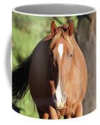 Grazing Mare  Coffee Mug