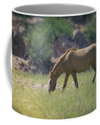 Grazing Wild Mustang  Coffee Mug