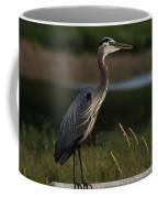 Great Blue Heron 1 Coffee Mug