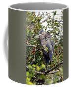 Great Blue Heron In A Tree Coffee Mug