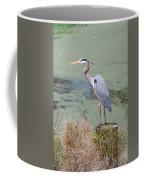 Great Blue Heron Near Pond Coffee Mug