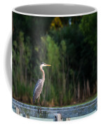 Great Blue Heron On A Handrail Coffee Mug