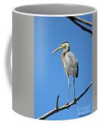 Great Blue Heron Watching And Waiting Coffee Mug