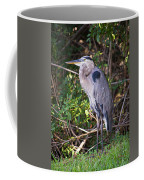 Great Blue Just Chillin' Coffee Mug