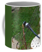Great Blue Skimmer Coffee Mug