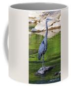 Great Blue Wading The Tuck Coffee Mug