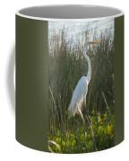 Great Egret At Coba Village Coffee Mug