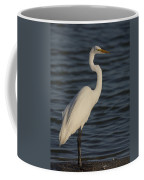 Great Egret In The Last Light Of The Day Coffee Mug