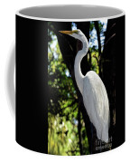 Great Egret Up Close Coffee Mug