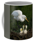 Great Egret With Chicks Coffee Mug