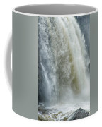 Great Falls Of Paterson Nj Coffee Mug