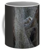 Great Horned Owl Fledgling Coffee Mug