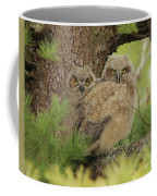 Great Horned Owlets Coffee Mug