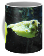 Great Longhorn Cowfish Swimming Along Underwater Coffee Mug
