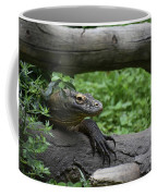 Great Look At A Komodo Monitor Lizard With Long Claws Coffee Mug