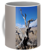 Great Sand Dunes National Park Fallen Tree Portrait Coffee Mug