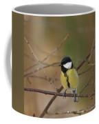Great Tit Female Coffee Mug