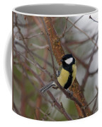 Great Tit Male Coffee Mug
