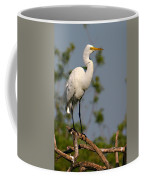 Great White Egret Pose Coffee Mug