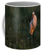 Great White Egret With Armored Catfish Coffee Mug