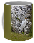 Great White Heron Race Coffee Mug