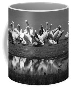 Great White Pelicans, Lake Nakuru, Kenya Coffee Mug