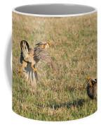 Greater Prairie Chicken Males 2 Coffee Mug