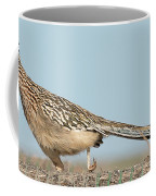 Greater Roadrunner On The Hunt Coffee Mug