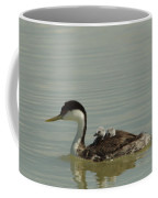 Grebe With Two Chicks On Its Back Coffee Mug