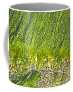 Green Algae On Rock Coffee Mug