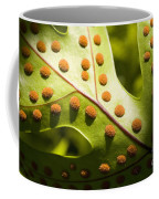 Green And Orange Leaf Coffee Mug
