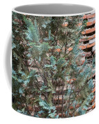 Green And Red - Cypress Branches Over Antique Roman Brick Wall Coffee Mug