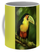 Green-billed Toucan Perched On Branch In Jungle Coffee Mug