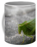 Green Bug Coffee Mug