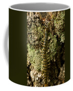 Green Centipede Coffee Mug