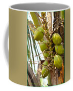 Green Coconut Coffee Mug