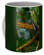 Green-crowned Brilliant Hummingbird Coffee Mug