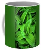 Green False Hellebore Coffee Mug