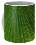 Green Fan - Radiating Lines And Scattered Polka-dots Coffee Mug
